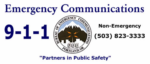 911 | Partners in Public Safety