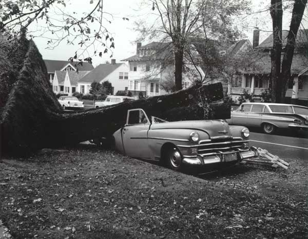 1962 Columbus Day Storm damage crushed car